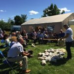 Ian Brooksbank from the Wool Board giving a 'Wool Talk' at the 2015 AGM