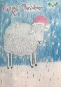 Baa Baa Christmas Cards